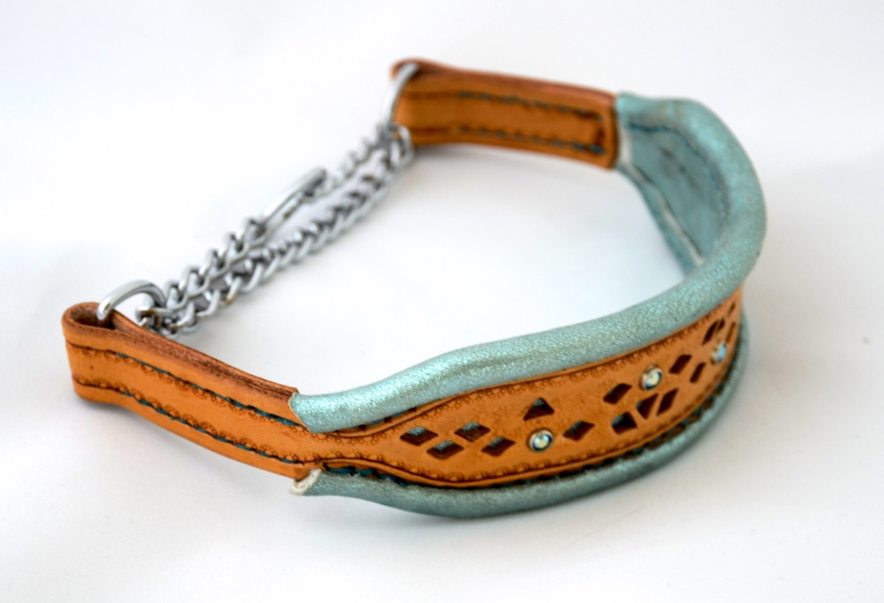 rolled edge dog collar
