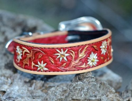 Fire Daisy Dog Collar with Swarovski Crystals