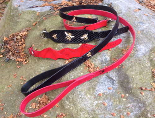 The Bats and the Bees: Dog Collar/Leash Sets