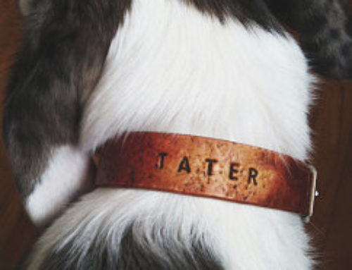 Customer Rugged Collar Tater