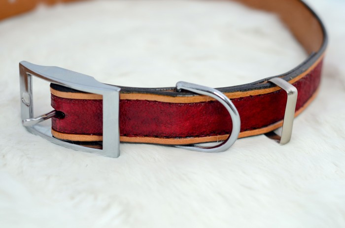 A puppy collar, featuring a keeper
