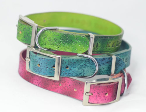 Colourful Rugged Leather Dog Collars