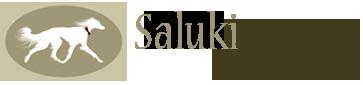 Saluki Feathers Logo